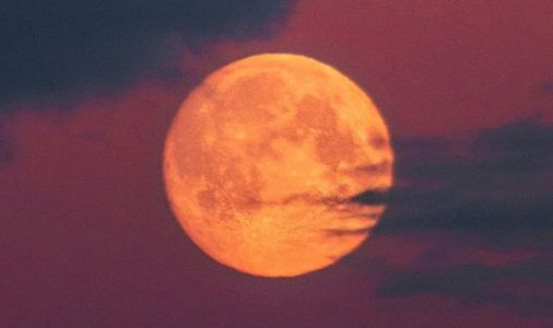 Pink Supermoon 2020: When is the next Full Moon? When is the Pink Moon?