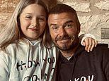 David Beckham shares cute snap of himself and daughter Harper twinning in matching Friends hoodies