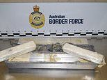 Haul of Mexican cocaine worth $104 million hidden in aluminum blocks weighing 233kg is seized