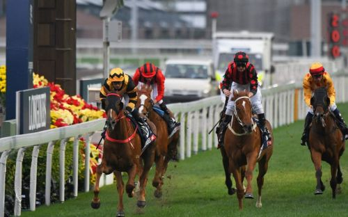 Sha Tin Tips: Your best bets for Hong Kong as the action continues behind closed doors