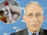 Dr Fauci warns that early COVID-19 vaccines will only prevent symptoms - not block infection