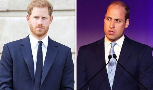 Prince Harry and Prince William 'weren't talking to each other' during huge royal row