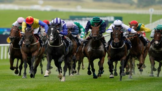 Ayr Gold Cup: Timeform's runner-by-runner guide