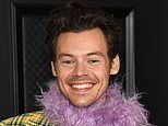 Harry Styles is 'richest One Direction star after his record label DOUBLES it value to £28m'