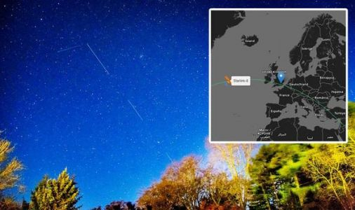Starlink tracker UK: How to see SpaceX satellites over the UK this week