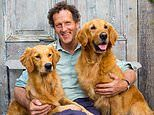 Fresh angst for Monty Don as his dog Nellie has a brush with death