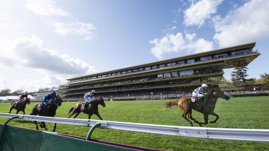 French Racing Tips: Back Reventador to get off the mark