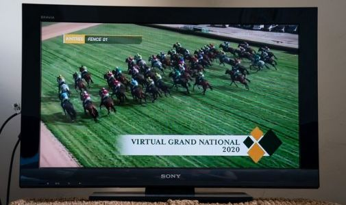 Virtual Grand National: 4.8m viewers watch on television