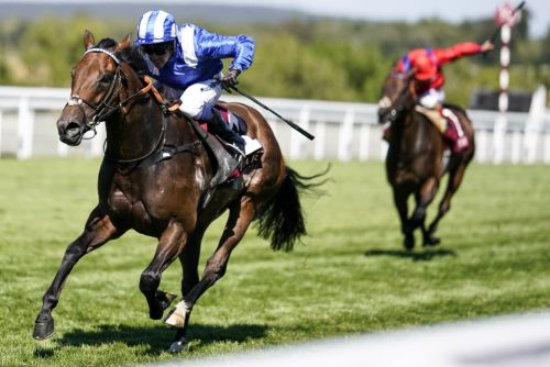 Goodwood tips Day 4: Get Battaash at 6/1 to win the King George Stakes