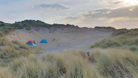 National Trust urges public not to fly-camp as 'unprecedented' number of staycationers visit beauty spots