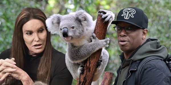 I'm A Celebrity camp 'invaded by chlamydia-carrying koala named Karl' ahead of start date