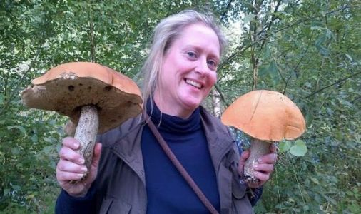The wonders of foraging: Expert reveals what Britain's countryside really has to offer