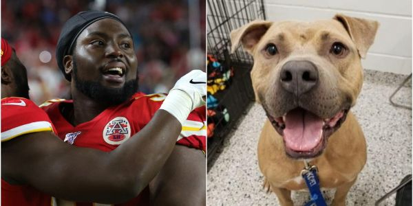 Kansas City Chiefs' Derrick Nnadi paid adoption fees for more than 100 dogs after winning the Super Bowl