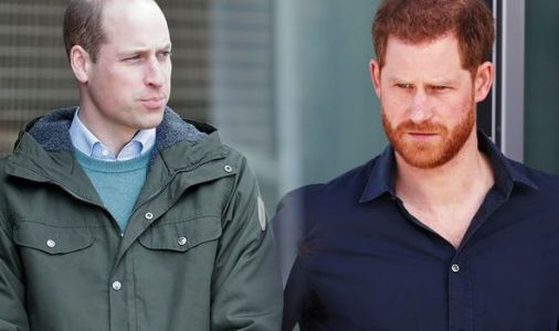 Prince Harry blow: How Harry was branded 'distant memory' as Prince William steps up role
