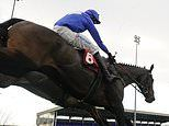 Robin Goodfellow's Racing Tips: Best bets for Tuesday, December 1