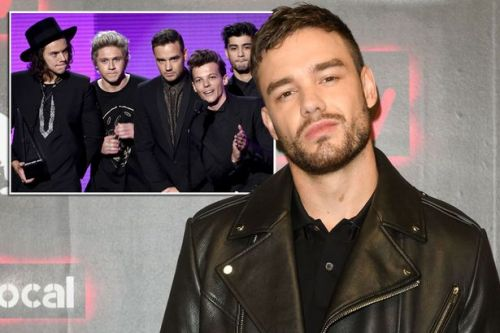 Liam Payne says One Direction left him on verge of madness and would have killed him