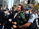 NSW Covid anti-lockdown protest: Men in court for assaulting police, horses and rioting