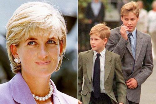 Heartbreaking promise Prince William made to Diana when she had HRH title taken away