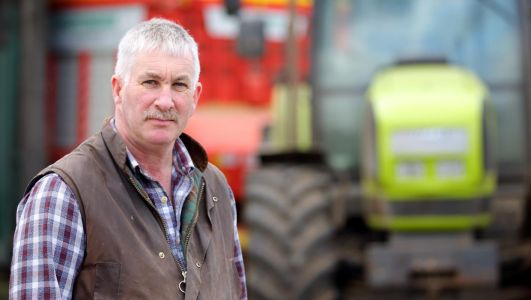 Trader Support Service helps you move goods into Northern Ireland