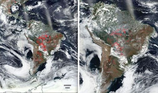 Amazon rainforest fires: Latest NASA satellite images show scale of raging Amazon fires