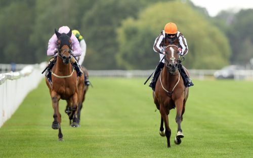 Marlborough racing tips and best bets for Monday July 6