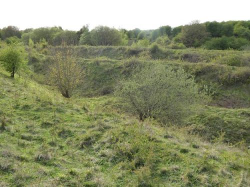 Northamptonshire's natural treasures 'under threat'