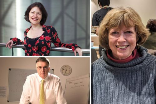 New Year Honours List 2021 Celebrates Many in Social Science