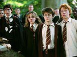 Harry Potter live-action TV series is in 'early development' at HBO Max