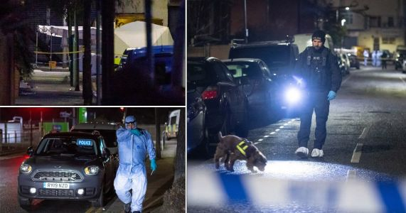 Two arrested after three people are stabbed to death in Seven Kings