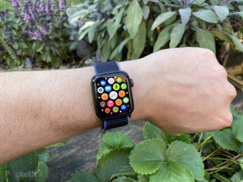 Apple Watch SE review: The smarter choice for your wallet