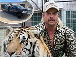 Tiger King star Joe Exotic's team have LIMO ready to pick him up from jail for expected Trump pardon