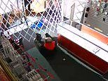 Cell Clinic footage shows suspected burglar getting trapped inside store in Canada