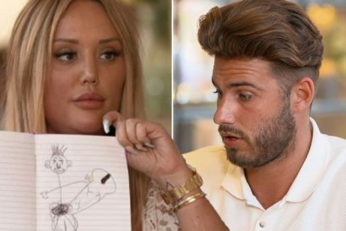 Why did Charlotte Crosby and Joshua Ritchie split? Fans lay out their theories