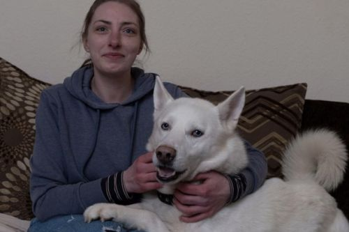 Knife thug threatened to stab Scots dog owner in terrifying pet husky rescue
