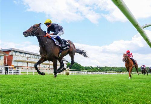 St Leger or France for English King with Ed Walker 'frustrated' but not disheartened after Glorious Goodwood defeat
