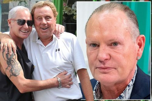 Harry Redknapp rescues drunken Gazza from out-of-control bender in restaurant