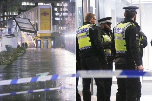 East Croydon: 'Machete attacker' flees with 'blood everywhere' after fatal stabbing