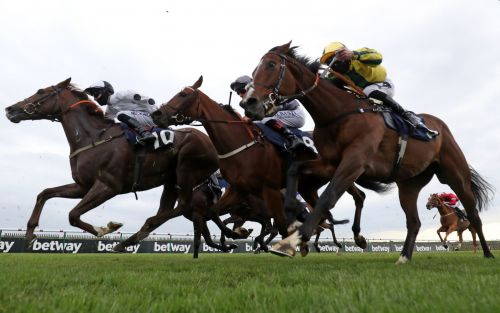 Marlborough racing tips and best bets for Saturday June 6