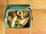 Average family throws away £700 worth of food every year