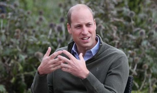 Prince William better at being 'woke' than Meghan Markle and Prince Harry says expert