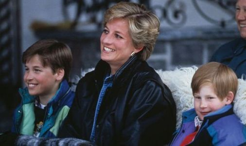 Lovin' it: Diana always took William and Harry to McDonald's - but not for the fast food