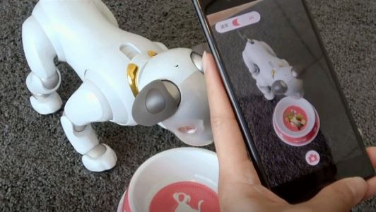 You Can Now Buy Pretend Food for Your £2,200 Sony Robot Dog