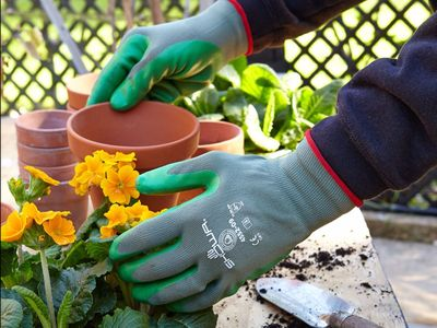 The best gardening and landscaping tools