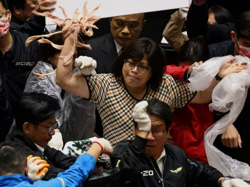 Taiwanese politicians threw punches and pig guts in parliament in bitter dispute over US pork imports