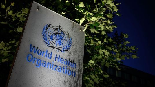 Why the US Leaving the WHO Could Be Disastrous for the World