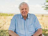 Sir David Attenborough joins Instagram aged 94 to warn 'the world is in trouble'