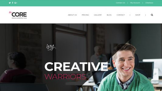 Best premium WordPress themes of 2020