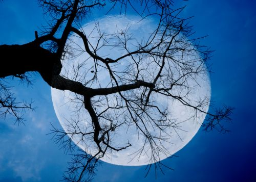 Full Moon October: Rare 'blue moon' to be visible on Halloween