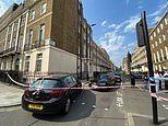 Man in his 20s is shot and another is stabbed near Hyde Park on another night of bloodshed in London