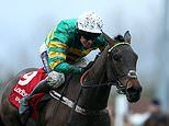Epatante sees Champion Hurdle odds cut after dominating Newcastle's Fighting Fifth Hurdle